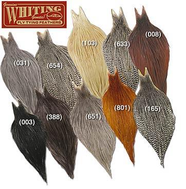 Cuellos Whiting Grado Silver