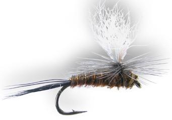 parachute-pheasant-tail