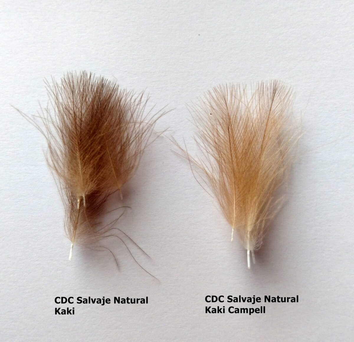 Plumas de CDC Salvaje Natural Select