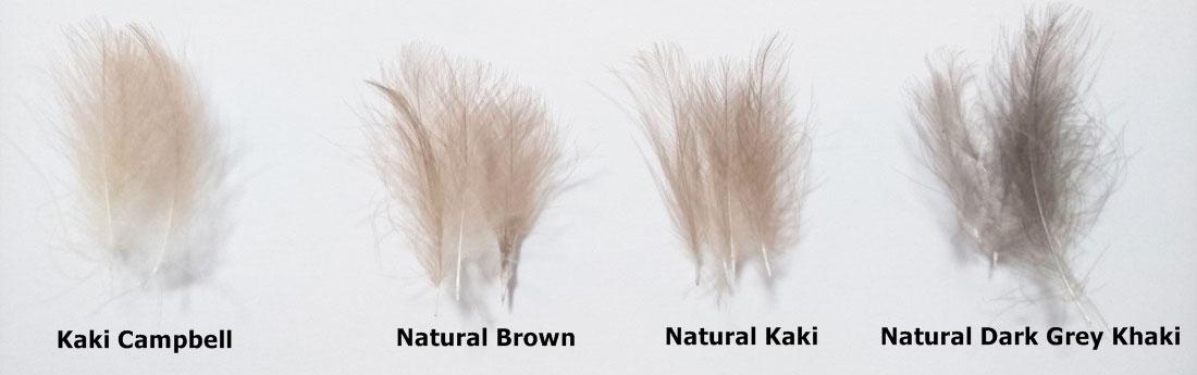 Plumas-de-cdc-Natural-culo-de-pato