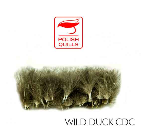 Polish CDC Plumas Pato Salvaje Wild Duck 2 Gr.