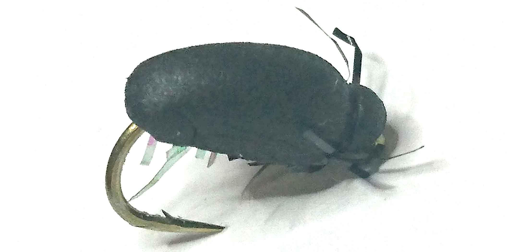 escarabajo-con-cuerpo-de-foam