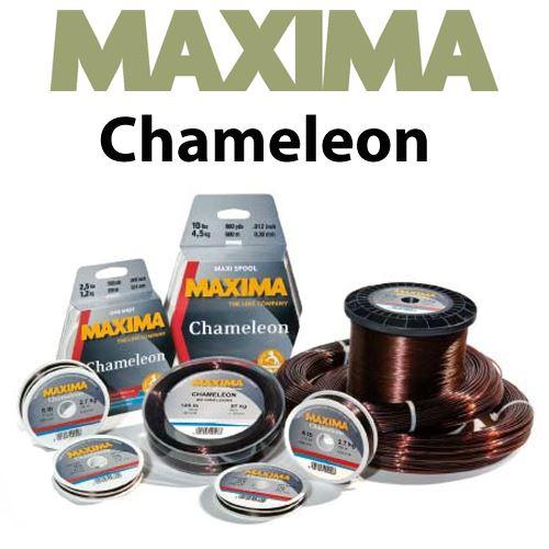 maxima-chameleon